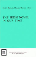 The Irish novel in our time